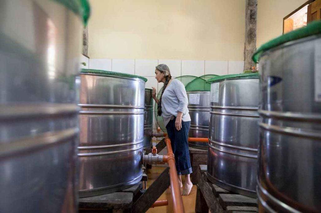 Maria Izabel observando fermentacao