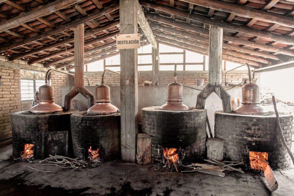 destilação de mezcal
