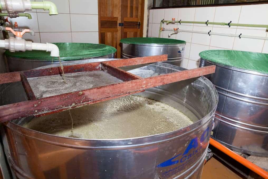 Como produzir cachaça: fermentação